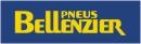 http://www.bellenzier.com.br